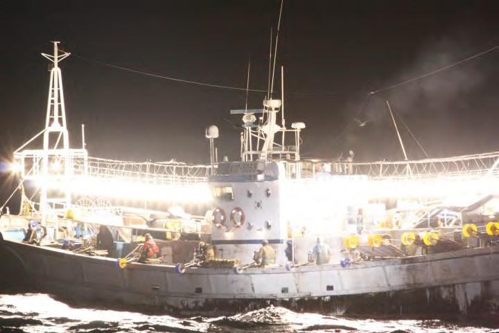 九州漁業調整事務所/韓国いか釣り漁船の拿捕について