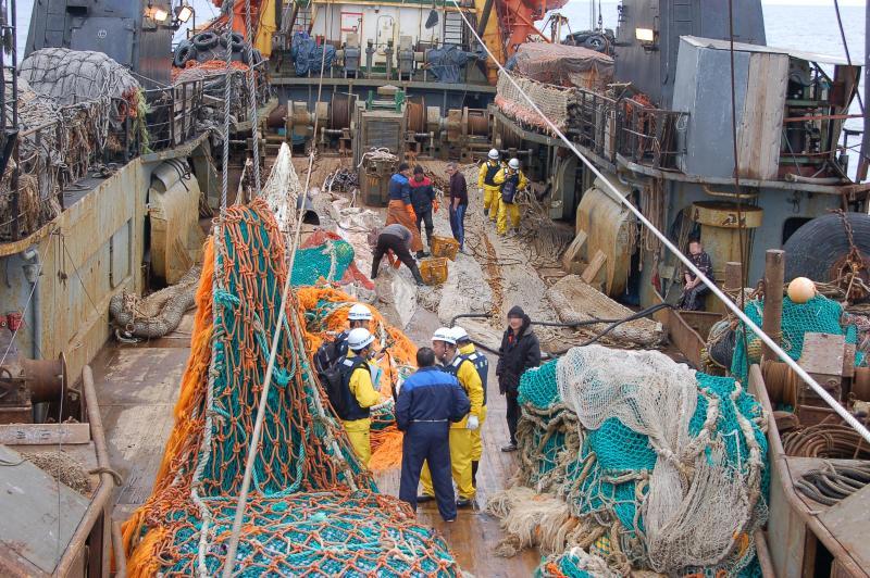 ロシア大型冷凍トロール漁船魚網検査