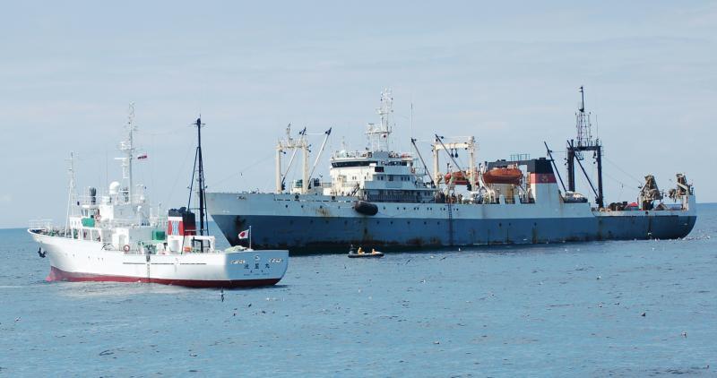 ロシア大型冷凍トロール漁船船体