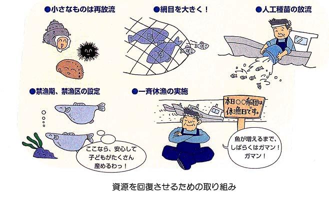 仙台漁業調整事務所